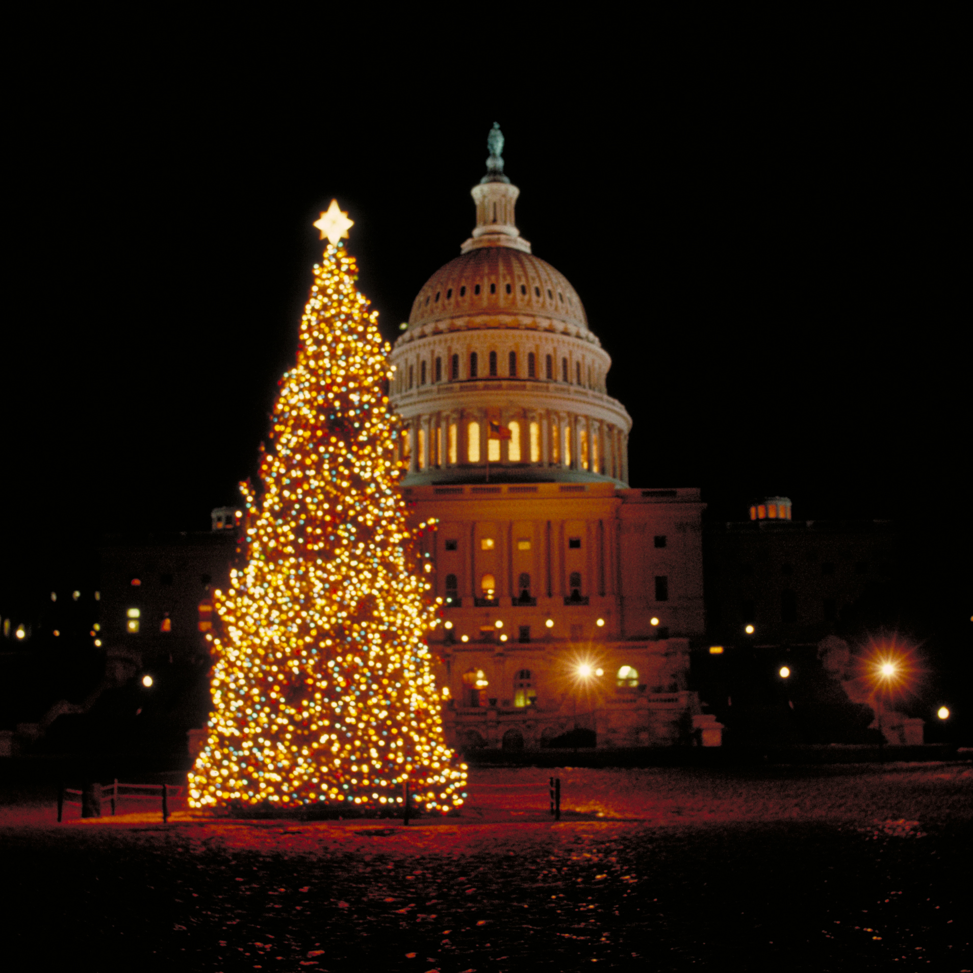 Community At Embassy Park Dc Pool: Holiday Events In Washington, D.C.