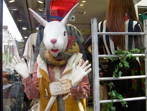 2014-12-12-Rabbit1.JPG