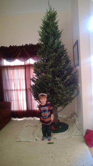 2014-12-17-1487893_10152454849628378_550035930_o.jpg