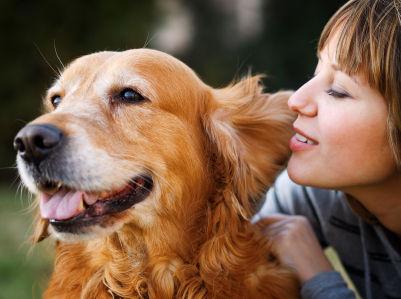 2014-12-17-dogdaycare.jpg
