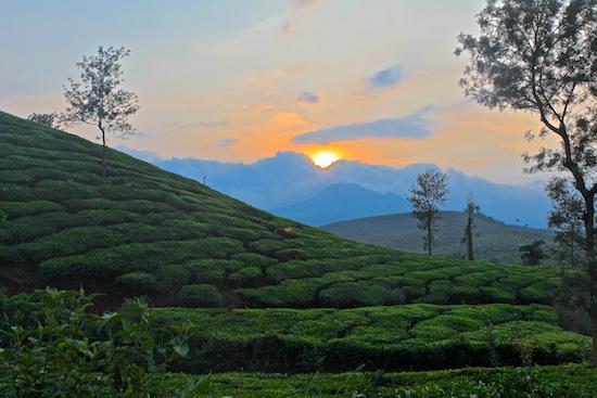 2014-12-19-Ajayjainkeralawayanad03110044.jpg