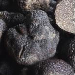 2014-12-19-truffle.jpg