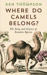 2014-12-21-Camels.png