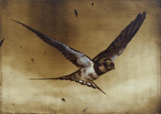 2014-12-22-Ornithology13550x392.jpg