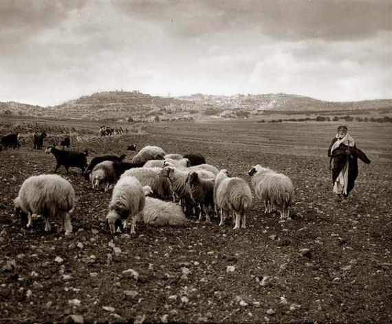 2014-12-23-shepherdsbethlehem.jpg