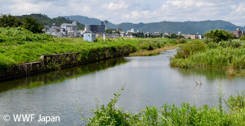 2014-12-26-141226ayumodoki.jpg