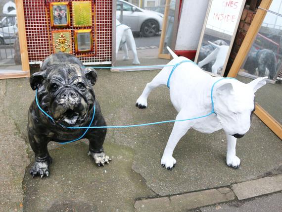 2014-12-31-bulldogsmirrorshop.jpg