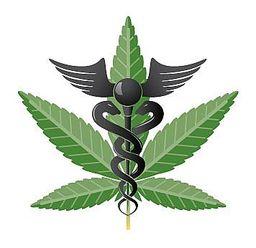 2015-01-01-MedicalMarijuana_photo.jpg