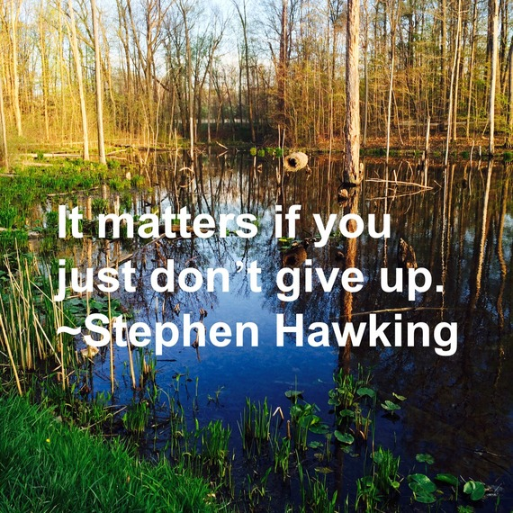 """""""It matters if you just don't give up."""" ~ Stephen Hawking #quote http://charityideasblog.com A Dozen #Inspiring Quotes for an Insightful 2015"""