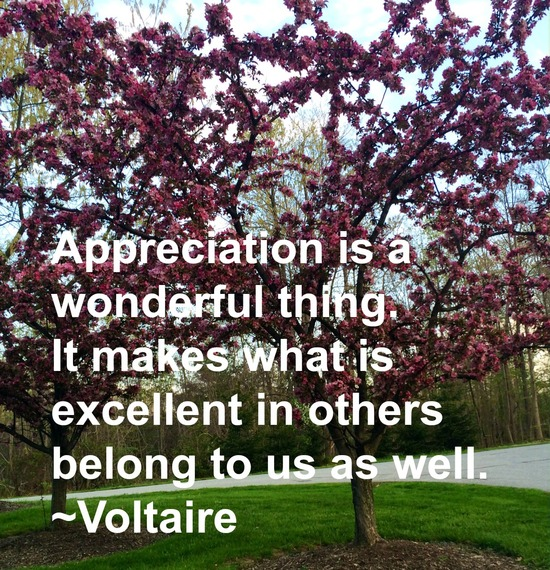 """""""Appreciation is a wonderful thing. It makes what is excellent in others belong to us as well."""" ~ Voltaire #quote http://charityideasblog.com A Dozen #Inspiring Quotes for an Insightful 2015"""