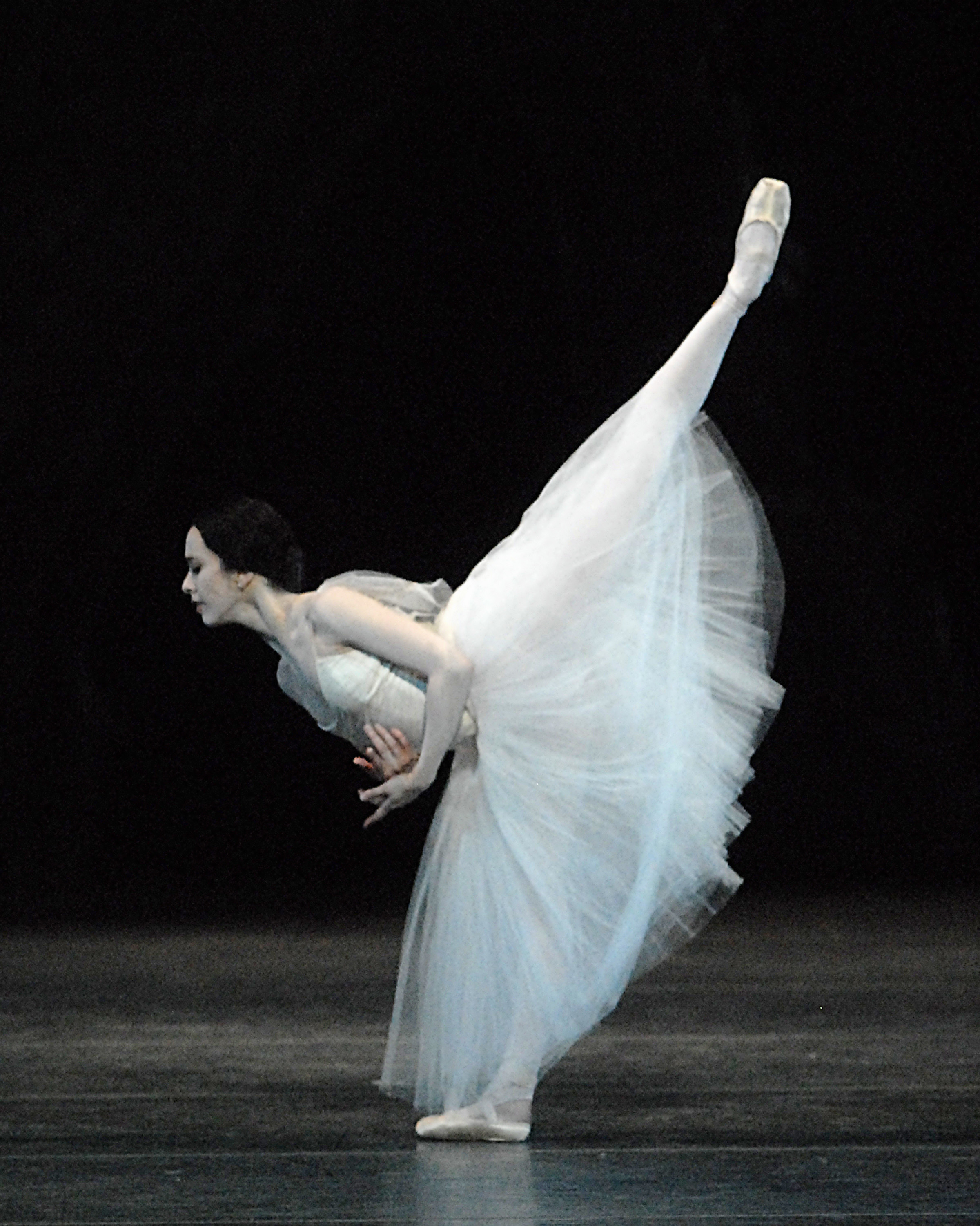 Changing of the Guard: Five Prima Ballerinas Reflect on ...