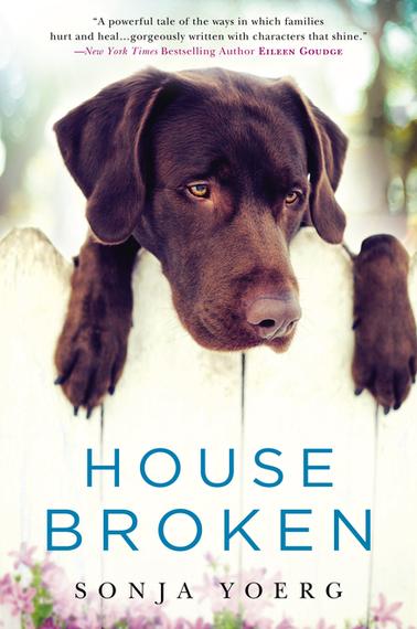 2015-01-04-HouseBroken1.jpg