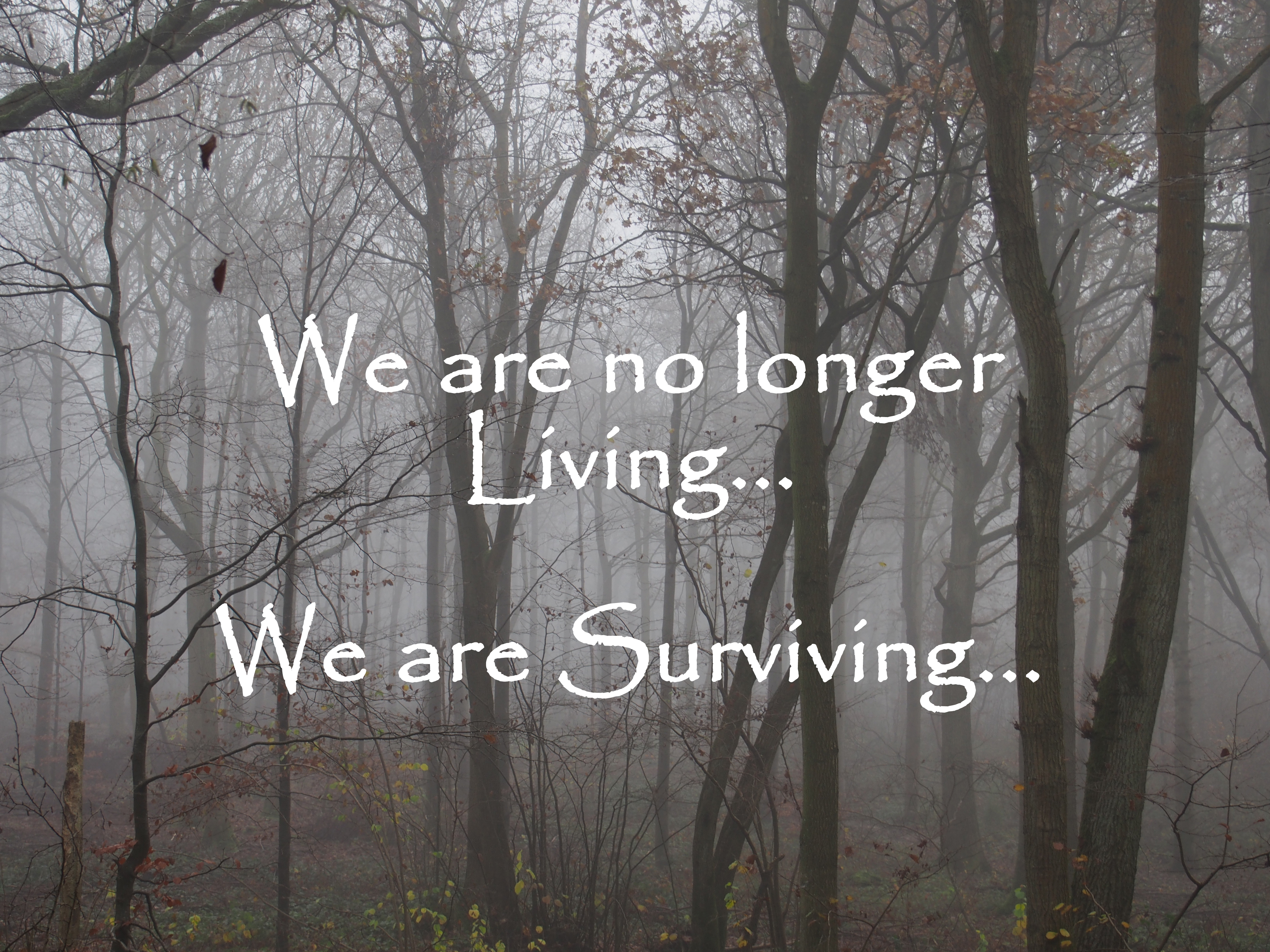 are you living or are you surviving can you tell the difference