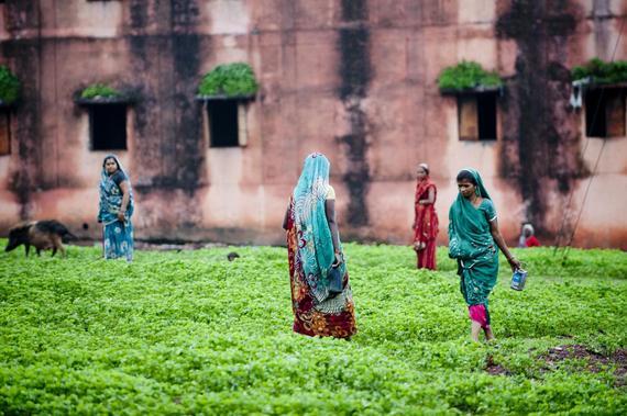 2015-01-06-IndianWomenODUNI147519.jpg