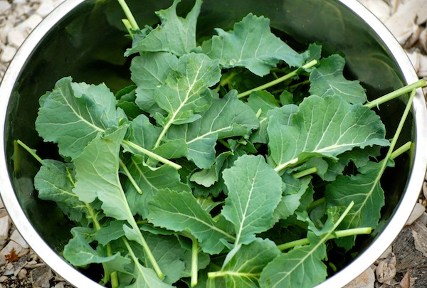 how to use broccoli leaves