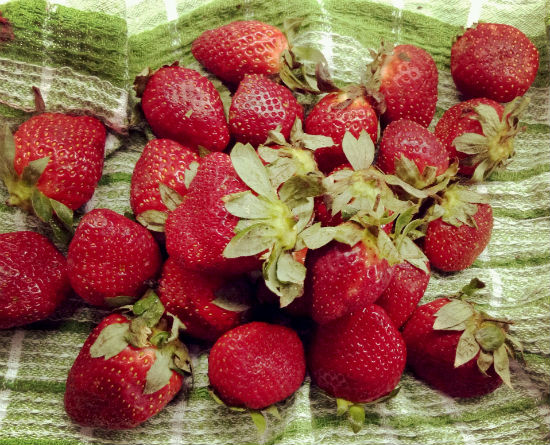 2015-01-08-KhushbooThadani_Image5Strawberries.jpg