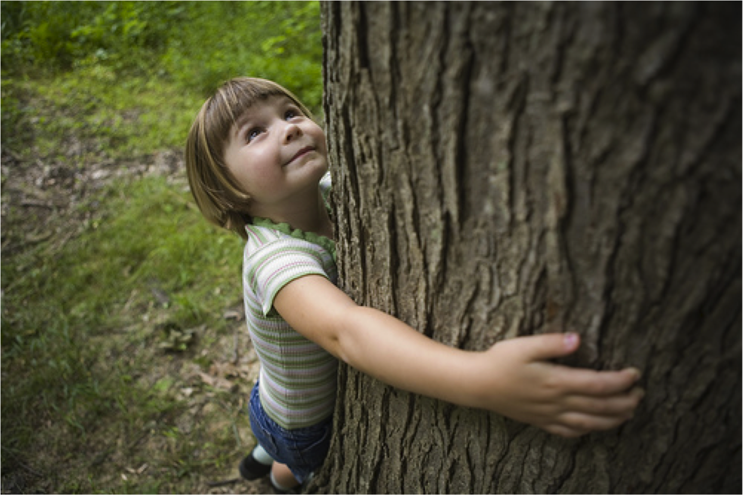 nature of a child 1 nature and nurture effects on children's outcomes: what have we learned from studies of twins and adoptees bruce sacerdote dartmouth college and nber.