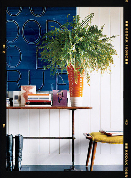 Images Unexpected Ways to Decorate with Ferns 2 home decor