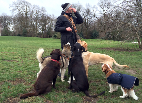 2015-01-16-Fernandoanddogs.jpg