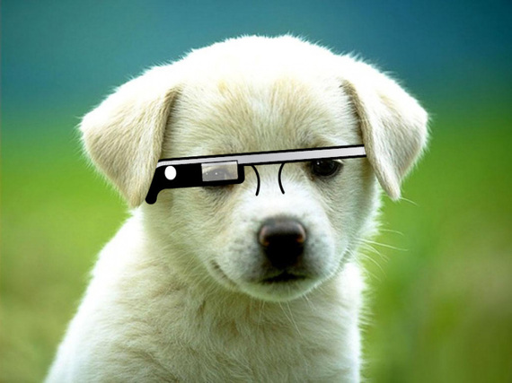 2015-01-20-20150120techcrunch_puppyglass.jpg