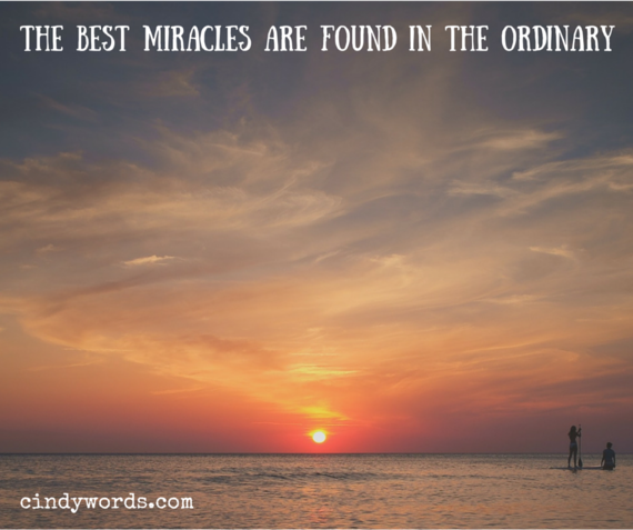 2015-01-27-MiraclesintheOrdinary.png