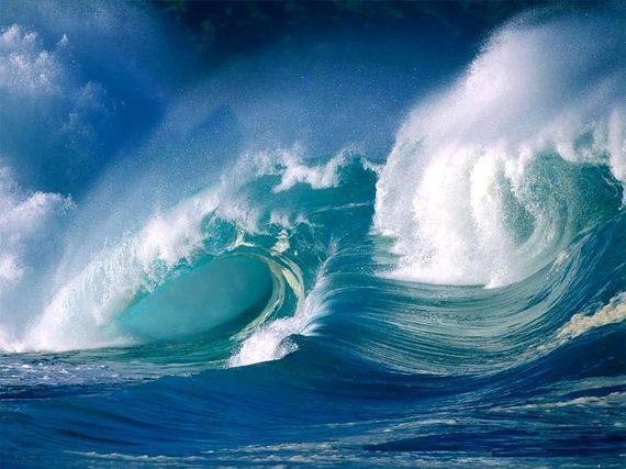 2015-01-27-OceansEarthDrReeseHalter
