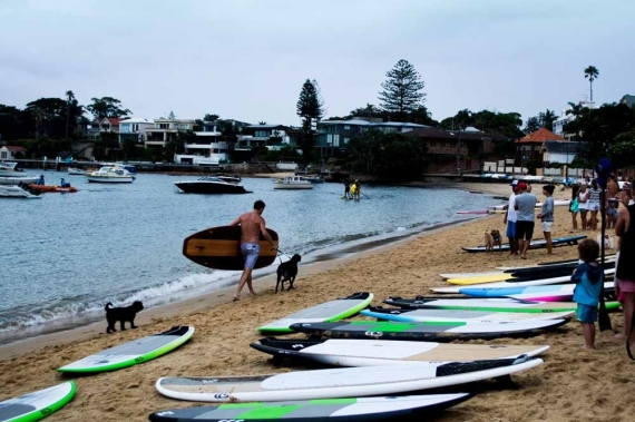 2015-01-28-7._watsons_bay_australia_day_paddle_boards_man_dog_race__1422422682_24174.jpg