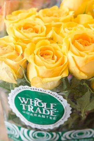2015-01-30-Whole_Trade_Roses22_0.jpg