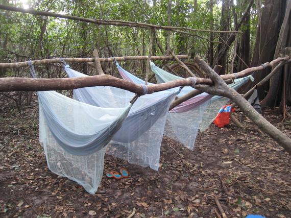2015-01-31-mosquitonet.jpg