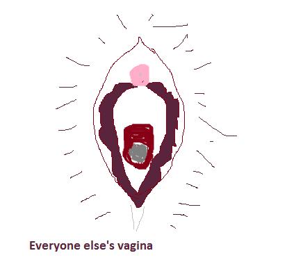 2015-02-04-everyoneelsesvagina.png