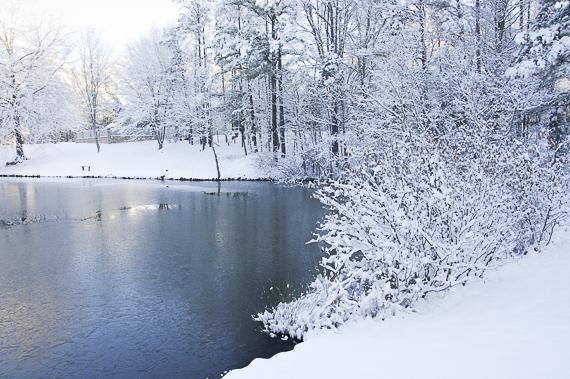 2015-02-05-Snow3430.jpg