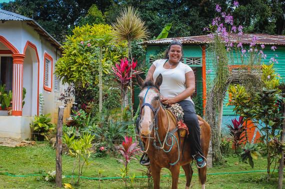 2015-02-05-horse.jpg