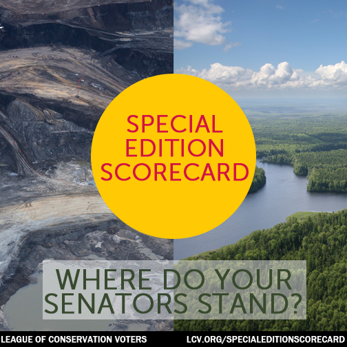 2015-02-05-specialeditionscorecard12.png