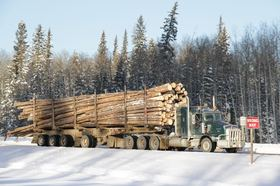 Why Wood Waste to Energy Is a