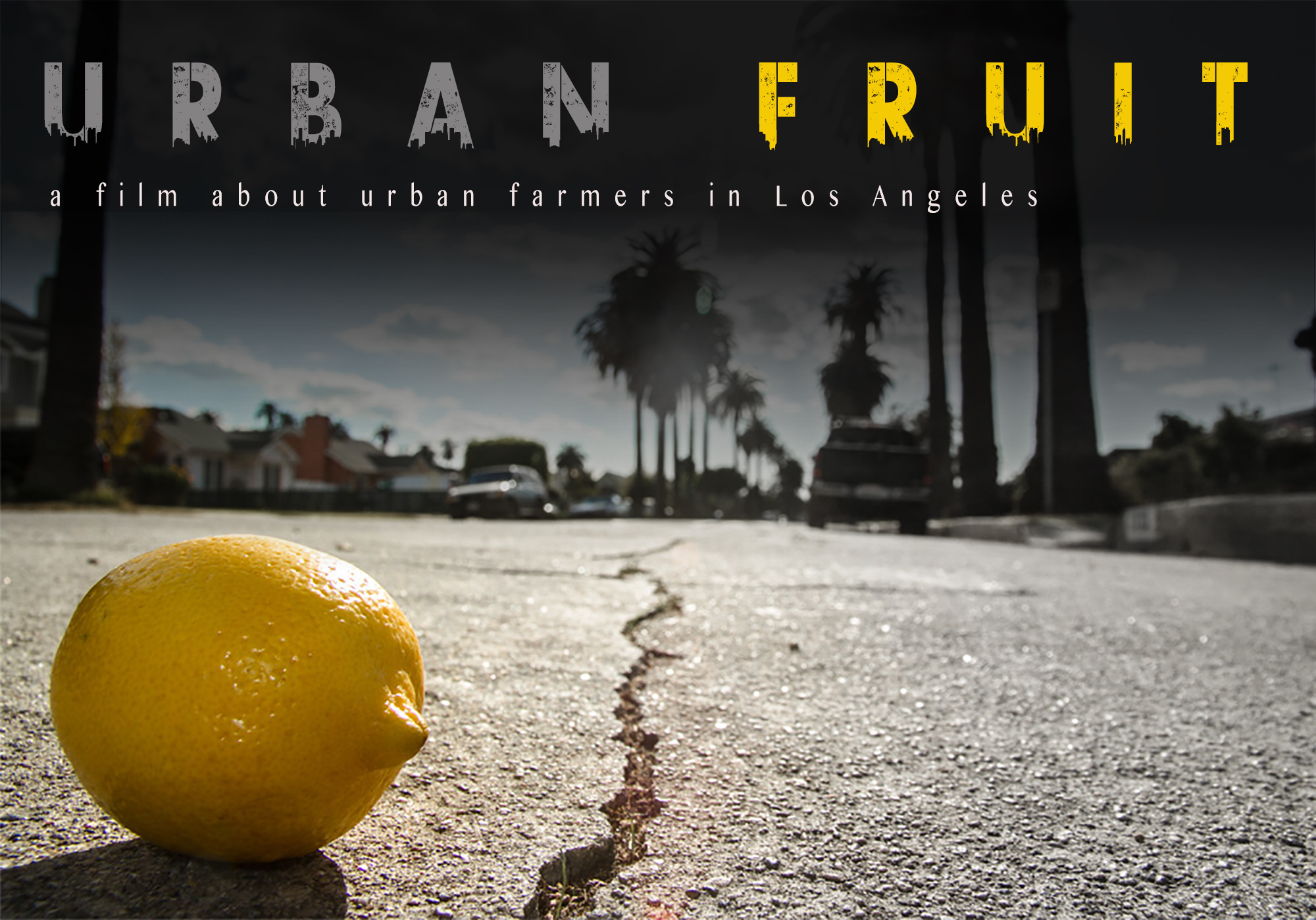 Urban Fruit, 2013