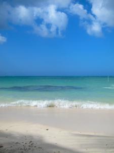 2015-02-17-beachandocean225x300.jpg