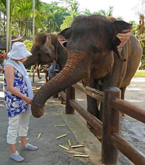 2015-02-19-Bali6.jpg