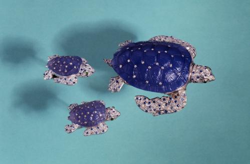 2015-02-23-turtleswim.png