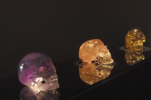 2015-02-23-zad_skulls3L_500.png