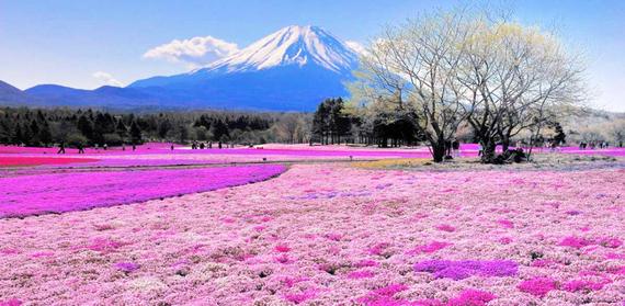 2015-02-24-colorful_4.jpg