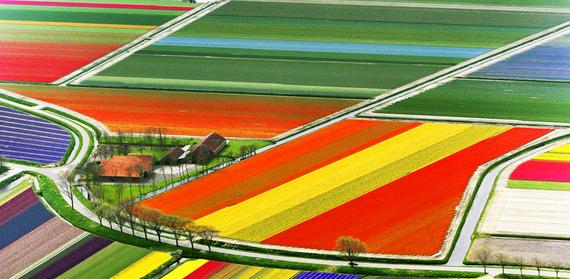 2015-02-24-colorful_6.jpg