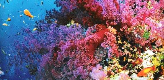 2015-02-24-colorful_8.jpg