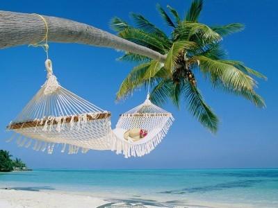 2015-02-25-wallcoo.com_beach_coconut_palm_55071400x300.jpg