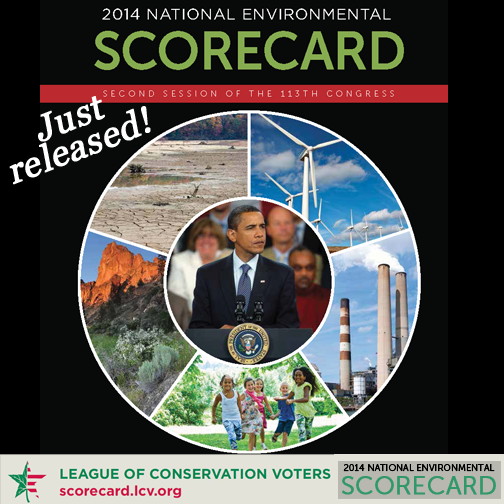 2015-02-26-scorecard1.png