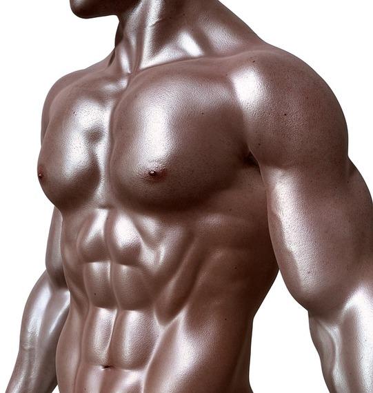2015-02-27-bodybuilder331670_640.jpg