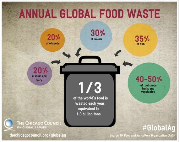 2015-02-27-wastedfoodwastednutrients1.jpg