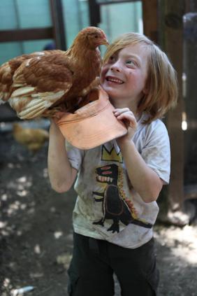 2015-02-28-chicken1.png