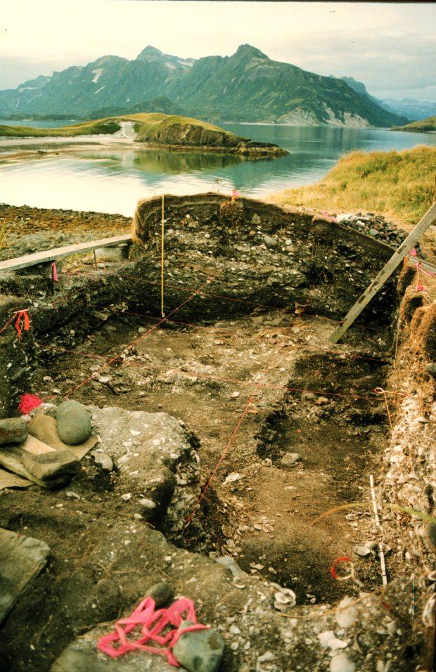 Ancient cod bones carry modern warning about mercury for Cod fish mercury