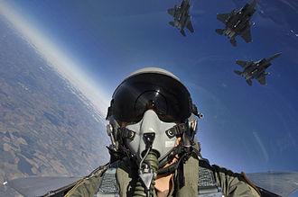 2015-03-03-1425413768-3890236-fighterpilot.jpg