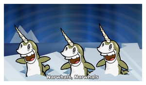 Narwhals Narwhals Causing A Commotion An Interview With Mr